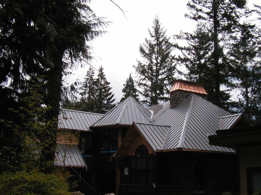 Metal_Roofing12